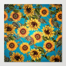 Vintage & Shabby Chic - Sunflowers on Turqoise Canvas Print