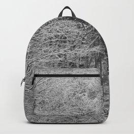 Inside Backpack
