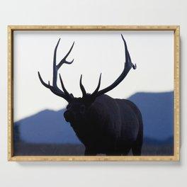 Watercolor Elk Bull 52, Estes Park, Colorado, Walk Slowly Backwards Serving Tray