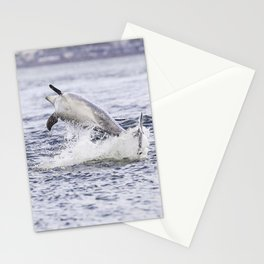 Playful dolphin Stationery Cards