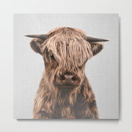 Highland Calf - Colorful Metal Print