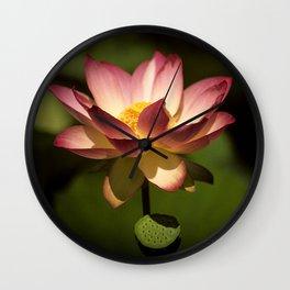 Lotus Flower Floating In Pond Wall Clock