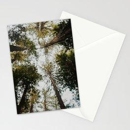 Muir Woods, California Stationery Cards