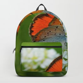 Vintage Butterfly Backpack