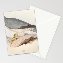 Pallid Harrier9 Stationery Cards
