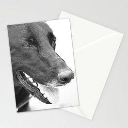 Mitzi, a bit older Stationery Cards
