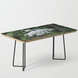 Queen Anne's Lace Coffee Table