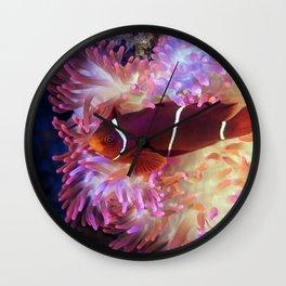 The Clownfish Show Wall Clock