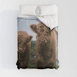 Scottish Highland Cattle Calves - Babies playing II Comforters