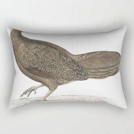 2511 Argus Pheasant Argus Paeoninus (Pavoninus) China 23 Natural size26 Rectangular Pillow
