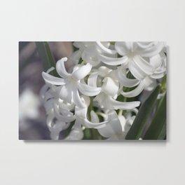 Spring Flowers Series 23 Metal Print