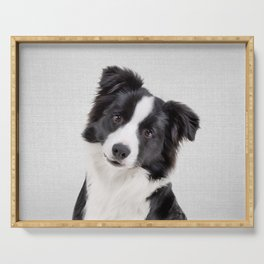 Border Collie - Colorful Serving Tray