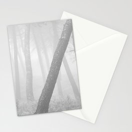 Inclined... Into the foggy woods Stationery Cards