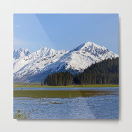Alaska Mt Range - Spring Metal Print