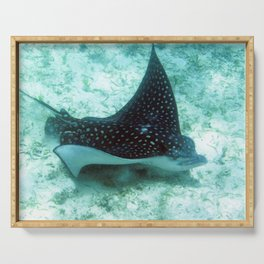 Watercolor Ray, Spotted Eagle Ray 36, St John, USVI Serving Tray