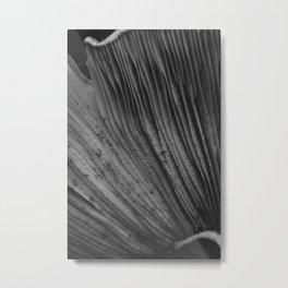 Moody Mushroom Gills in Black and White Russula  Metal Print