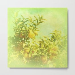 Mandarine Tree Metal Print