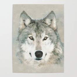 The Gray Wolf - Sketch Poster