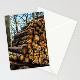 Poltery Site (Wood Storage Area) After Storm Victoria Möhne Forest 3 Stationery Cards