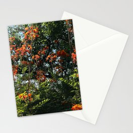 Red Flowers and Vibrant Trees Scenic Art Photo Stationery Cards