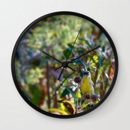Lesser Goldfinch Wall Clock