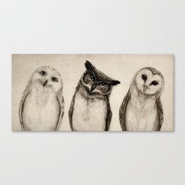 The Owl's 3 Leinwanddruck