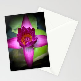 Colorful Waterlily with Vignette Stationery Cards