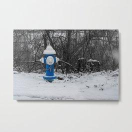 Blue Barrel White Bonnet Fire Hydrant West Virginia Fire Plug Metal Print