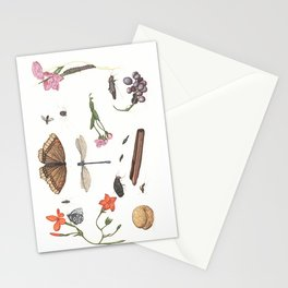Common place miracles -Natural History Part V Stationery Cards