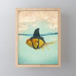 Brilliant DISGUISE - Goldfish with a Shark Fin Framed Mini Art Print
