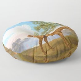 Pumpkin With A Stable-lad - George Stubbs Floor Pillow