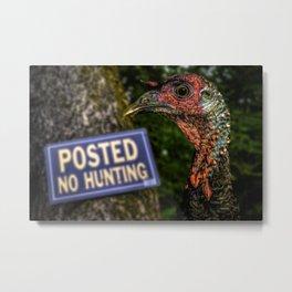 Wild Turkey Hunting Metal Print