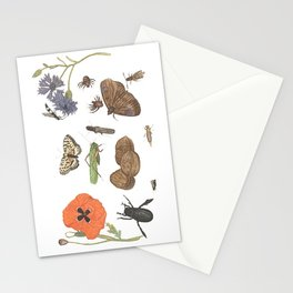 Common place miracles -Natural History Part II Stationery Cards