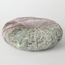 Prairie dog 01 Floor Pillow