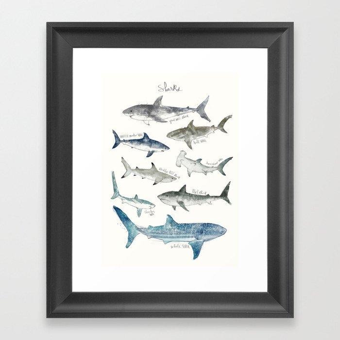 Sharks Gerahmter Kunstdruck