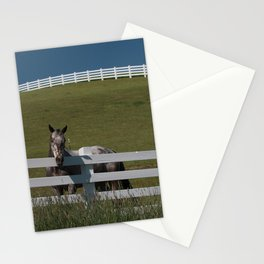 Horse in the Palouse Stationery Cards
