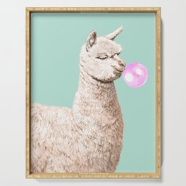 Playful Alpaca Chewing Bubble Gum in Green Serving Tray
