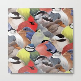 Fat backyard birds Metal Print