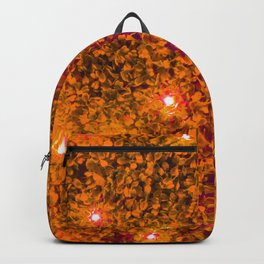 Hedge with Starlight Backpack