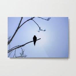 Bird Silhouette - Blue Skies Metal Print