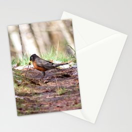 Robin and Worm Stationery Cards