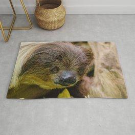 Sloth_20171107_by_JAMFoto Rug