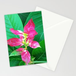 Flower #1 Color Stationery Cards