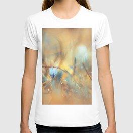 Soul of Fire T-shirt