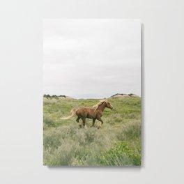 Wild Horses Couldn't Keep Me Away Metal Print