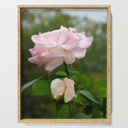 Admiration Pink Rose Nature / Botanical / Floral Photograph Serving Tray