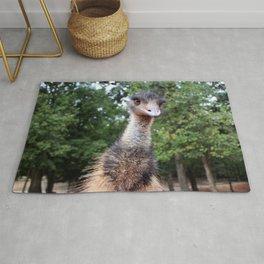 Curious Emu Rug