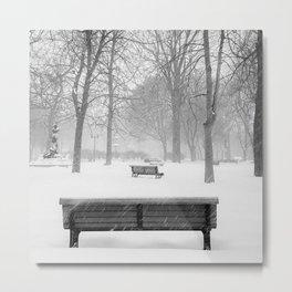Winter Park BW Metal Print