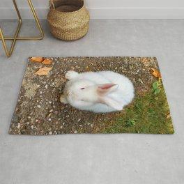 Fluffy white bunny Rug