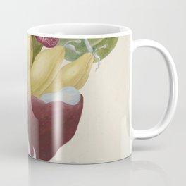 Maria Sibylla Merian Fruits Banana Coffee Mug